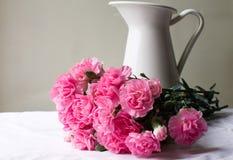 桃红色康乃馨和白色水罐 图库摄影
