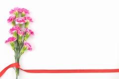 桃红色康乃馨开花与红色丝带的花束 免版税图库摄影