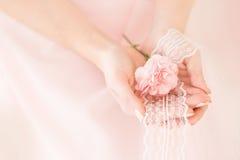 桃红色康乃馨花在一个女孩的手上桃红色背景的 库存图片