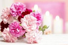 桃红色康乃馨花花束  免版税库存图片