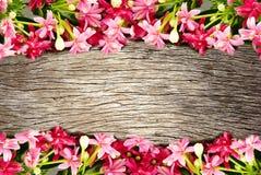 桃红色开花开花的花边界和框架在木背景 免版税库存照片
