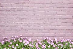 桃红色或淡紫色老砖墙有桃红色喇叭花花的沿块纹理的底下边 免版税库存照片
