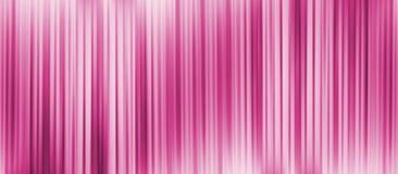 桃红色数据条 图库摄影