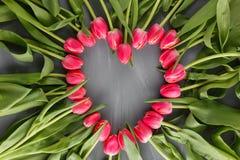 桃红色新春天郁金香植物的艺术花卉背景 心脏框架花圈开花概念妇女` s天贺卡 库存照片