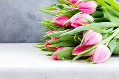 桃红色新鲜的郁金香 库存照片