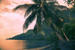 桃红色日落在波里尼西亚 库存照片