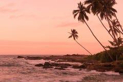 桃红色日落岩石点 图库摄影