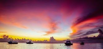 桃红色日落热带 库存照片