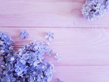 桃红色木背景春天的淡紫色花 免版税库存照片