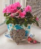 桃红色杜娟花和鸟在葡萄酒罐在窗口 库存图片