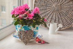 桃红色杜娟花和鸟在葡萄酒罐在窗口 免版税库存图片