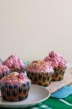 桃红色杯形蛋糕 库存照片
