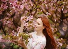 桃红色樱花背景的红发女孩在sprin的 免版税图库摄影