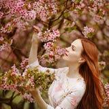桃红色樱花背景的红发女孩在sprin的 库存图片