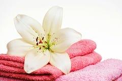 桃红色毛巾和白百合花 免版税库存图片