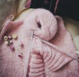 桃红色毛线,干玫瑰和开始的编织 库存照片