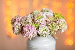 桃红色波斯毛茛花 在金属灰色葡萄酒罐头的卷曲牡丹毛茛属 有美丽的花束的花瓶 库存照片