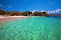 桃红色海滩 库存照片