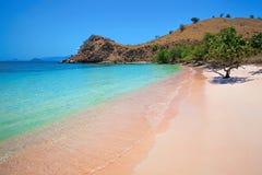 桃红色海滩 图库摄影