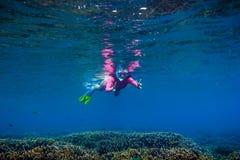 桃红色游泳衣的少妇 潜泳在热带海洋 免版税图库摄影
