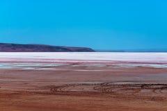桃红色湖在沙漠 库存图片