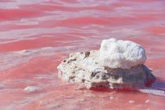 桃红色湖,澳大利亚西部 免版税库存图片