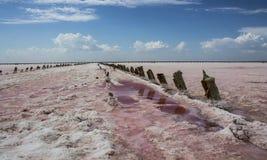 桃红色湖 库存图片