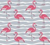 桃红色火鸟无缝的样式 图库摄影