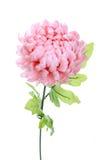 桃红色牡丹人造花 库存图片