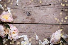 从桃红色牡丹花和瓣的边界在年迈的木backg 免版税库存图片