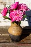 桃红色牡丹花束在土气木桌上的黏土水罐开花 库存照片