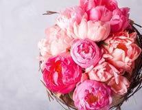 桃红色牡丹花束在白色的wodden箱子 与五颜六色的花的静物画 新鲜的牡丹 安置文本 花概念 Fres 免版税库存图片