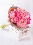 桃红色牡丹花束在白色的wodden箱子 与五颜六色的花的静物画 新鲜的牡丹 安置文本 花概念 Fres 图库摄影