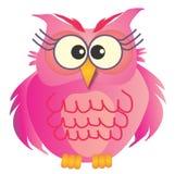 桃红色猫头鹰 库存照片