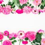 桃红色玫瑰、毛茛属和叶子框架在白色背景 花卉生活方式构成 平的位置,顶视图 免版税库存图片