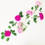 桃红色玫瑰、牡丹和叶子的花卉构成在白色背景 平的位置,顶视图 免版税库存照片