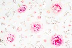 桃红色玫瑰、野花和瓣的花卉样式在白色背景 红色上升了 平的位置,顶视图 库存照片