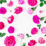 桃红色玫瑰和叶子花卉框架在白色背景 平的位置,顶视图 花卉生活方式构成 免版税库存图片