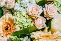 桃红色玫瑰和大丁草婚姻花束的雏菊花 库存图片