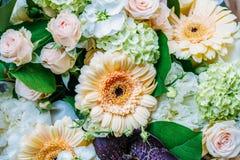 桃红色玫瑰和大丁草婚姻花束的雏菊花 免版税库存照片