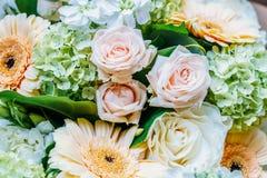 桃红色玫瑰和大丁草婚姻花束的雏菊花 免版税库存图片