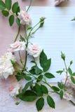 桃红色玫瑰和笔记本 图库摄影