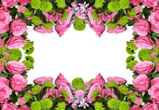 桃红色玫瑰和翠菊花花卉框架的 库存照片