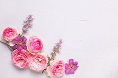 桃红色玫瑰和紫罗兰色夏天铁线莲属在灰色织地不很细b开花 免版税库存照片