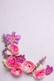 桃红色玫瑰和紫罗兰色夏天铁线莲属在灰色织地不很细b开花 图库摄影