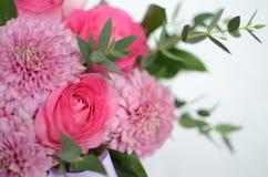 桃红色玫瑰在白色背景的安排花 免版税图库摄影