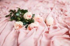 桃红色玫瑰在精美桃红色丝织物说谎 免版税图库摄影