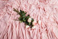 桃红色玫瑰在精美桃红色丝织物说谎 免版税库存图片