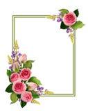 桃红色玫瑰开花并且发芽壁角安排和框架 免版税库存照片