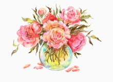 桃红色玫瑰或牡丹在一个玻璃花瓶 额嘴装饰飞行例证图象其纸部分燕子水彩 免版税库存图片